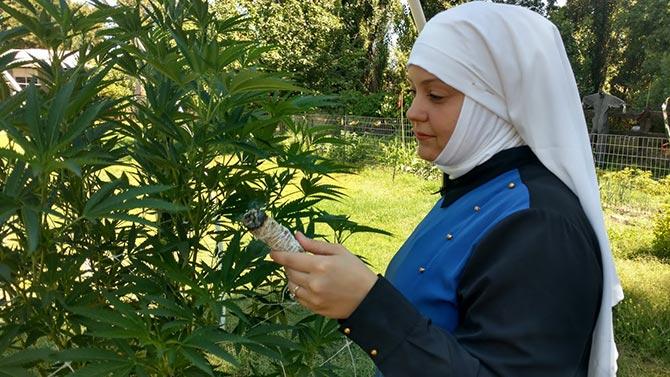 Sister Holds a Cannabis Bundle