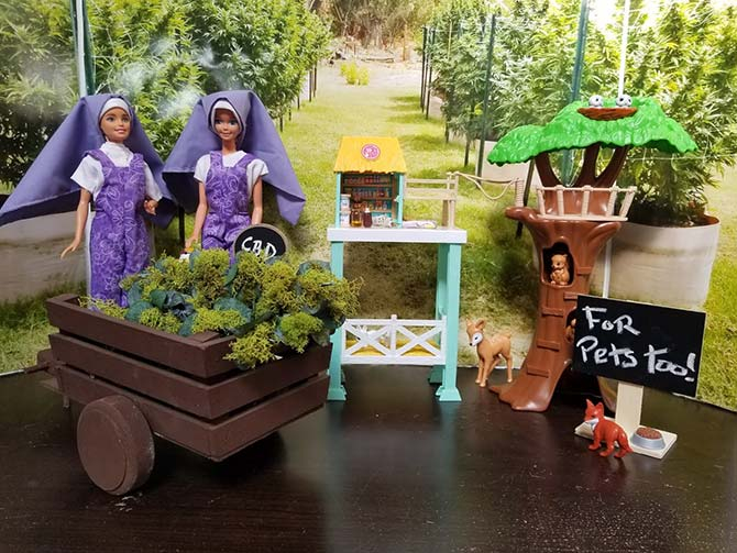 dolls like nuns sell cbd for pets