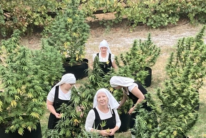 Sisters Working With Cannabis